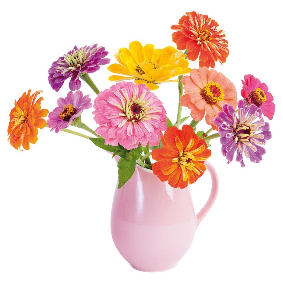flatflowers, raamstickers, zinnia
