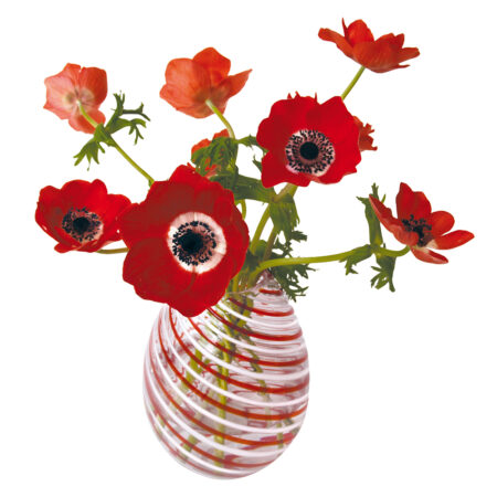 flat flowers, anemoon, rood, kaart
