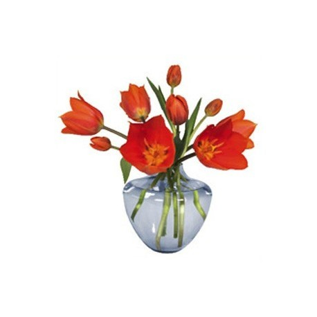 flat flower, kaart, oranje tulpen