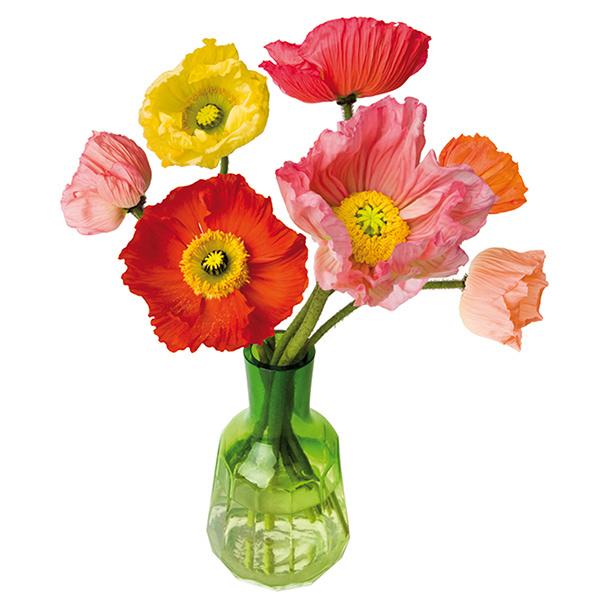 flat flowers, sticker, raamsticker, papaver